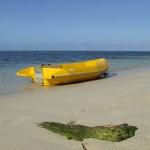 barca gialla