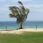 moreton island 4